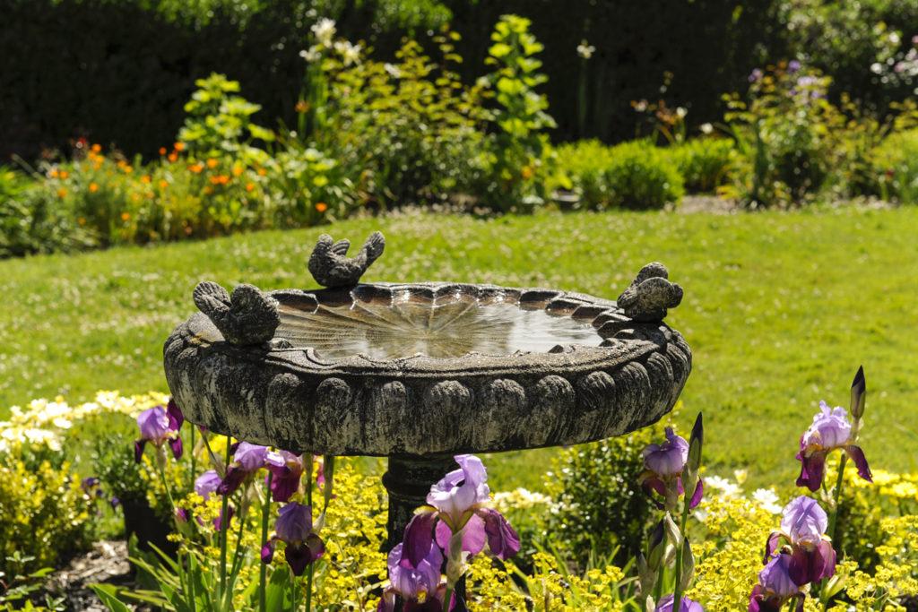 Benbow Historic Inn Spring season rose garden